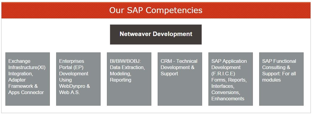 These are our SAP Competencies - what we know about SAP